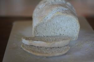 Plain all-purpose flour sourdough